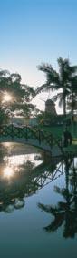 Lagoa com ponte